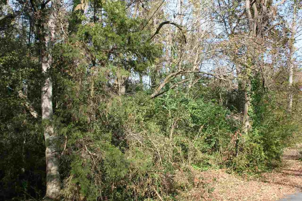 1404 Forest Hill Dr, Milledgeville, GA 31061
