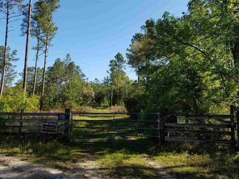 Photo of 10522 Bill Howell Rd, Perry, FL 32348