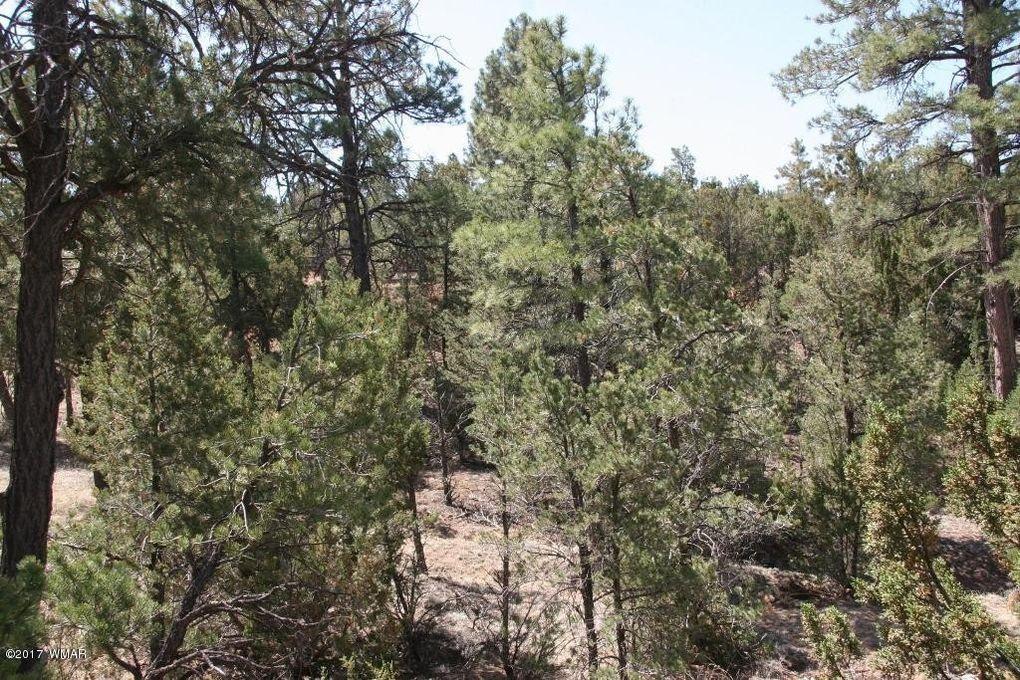 3650 Green Forest Dr, Heber, AZ 85928
