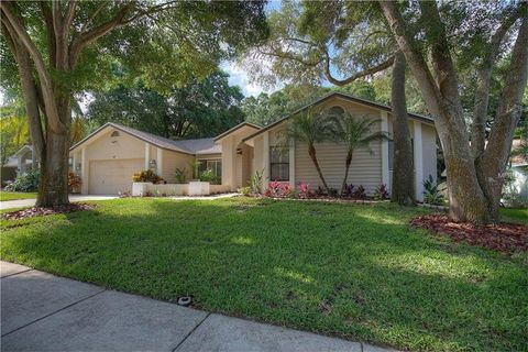 1489 Wetherington Way, Palm Harbor, FL 34683