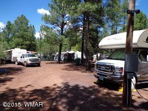 3530 Petes Retreat Rd, Lakeside, AZ 85929