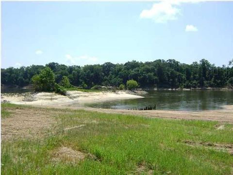 6 Sandy Bottoms Dr, Gainestown, AL 36545