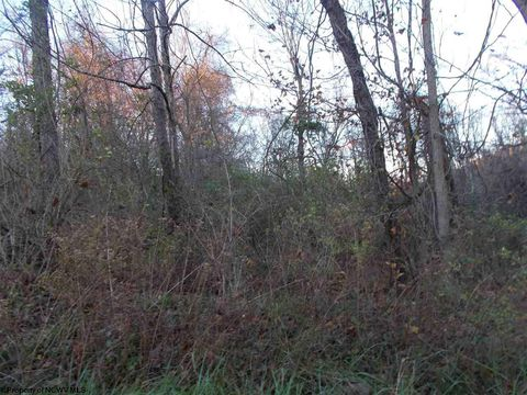 Hill St Lots 1 & 2, Rivesville, WV 26588