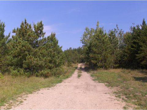 Photo of E2sw&senw County Road 95, Schoolcraft Township, MN 56458