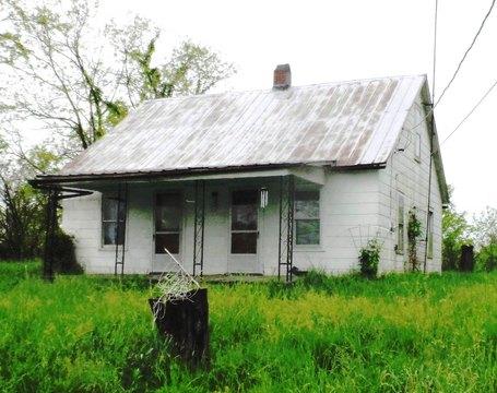 5935 Polin Rd, Willisburg, KY 40078