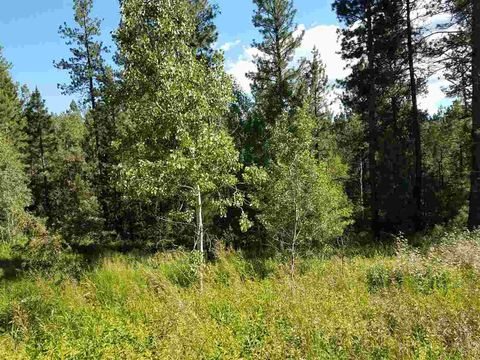 37 Shady Pine Way, Cascade, ID 83631