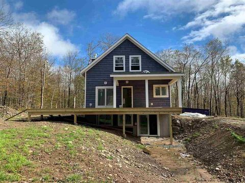 Clearwater Dr Lot 13, Livingston Manor, NY 12758