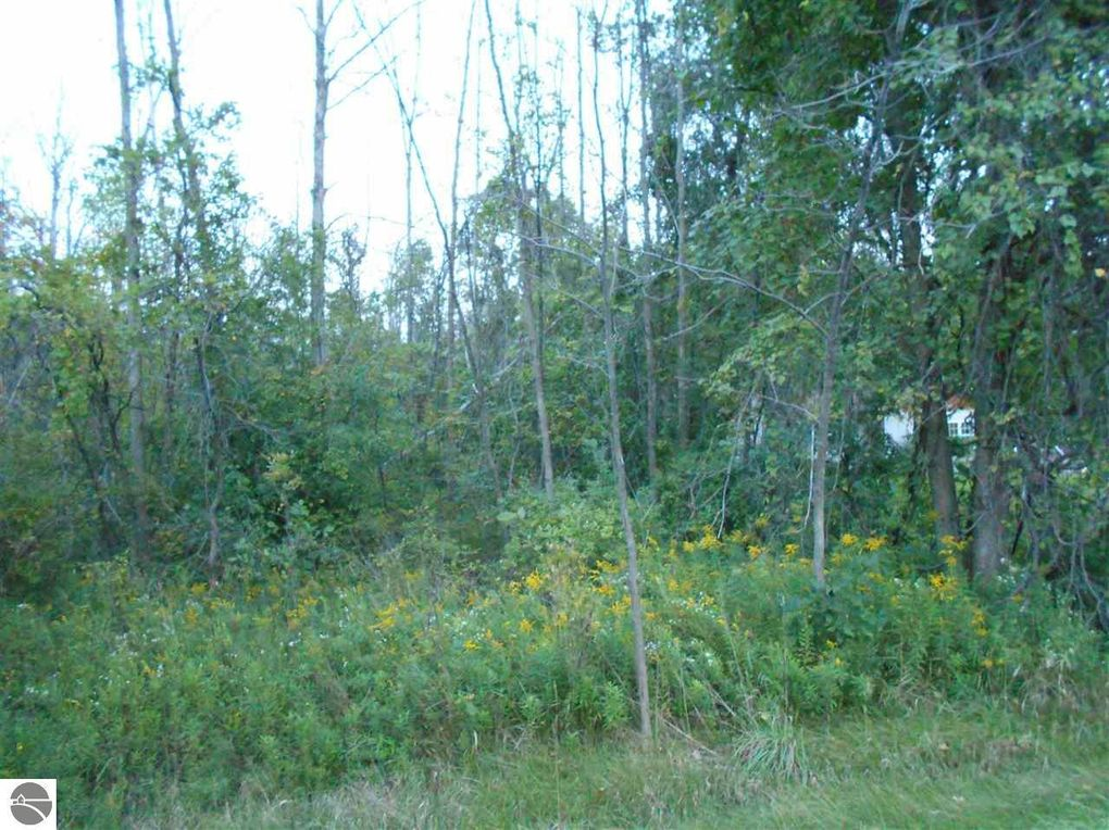 s huron pinconning mi 48650 land for sale and real estate listing