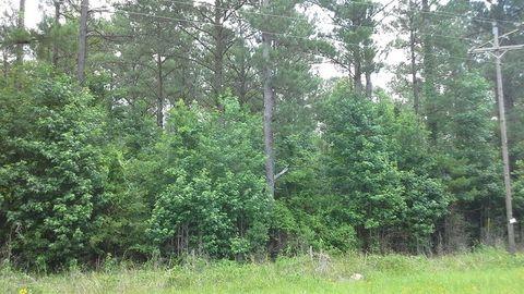 Photo of 15 Acre Fm 2992 E, Woodville, TX 75979