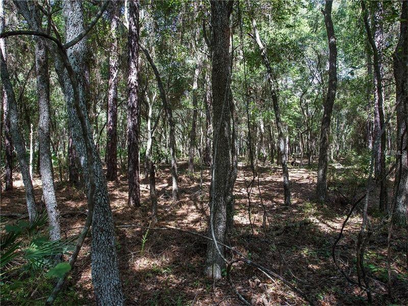 Seminole County Property Survey Records