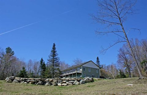 161 E View Ln, Mount Holly, VT 05758