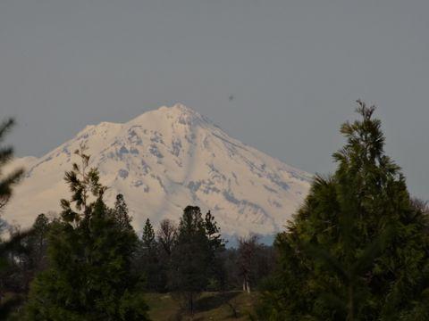 Photo of Dickerson, Whitmore, CA 96096