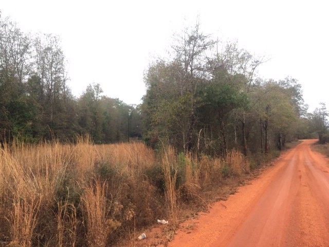 Hammac Rd, Brewton, AL 36426 - Land For Sale and Real Estate ...
