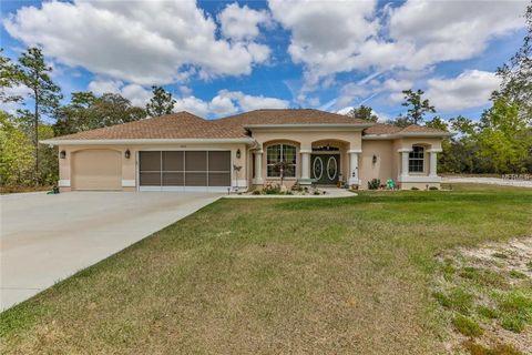 Photo of 10031 Yellowthroat Ave, Weeki Wachee, FL 34614