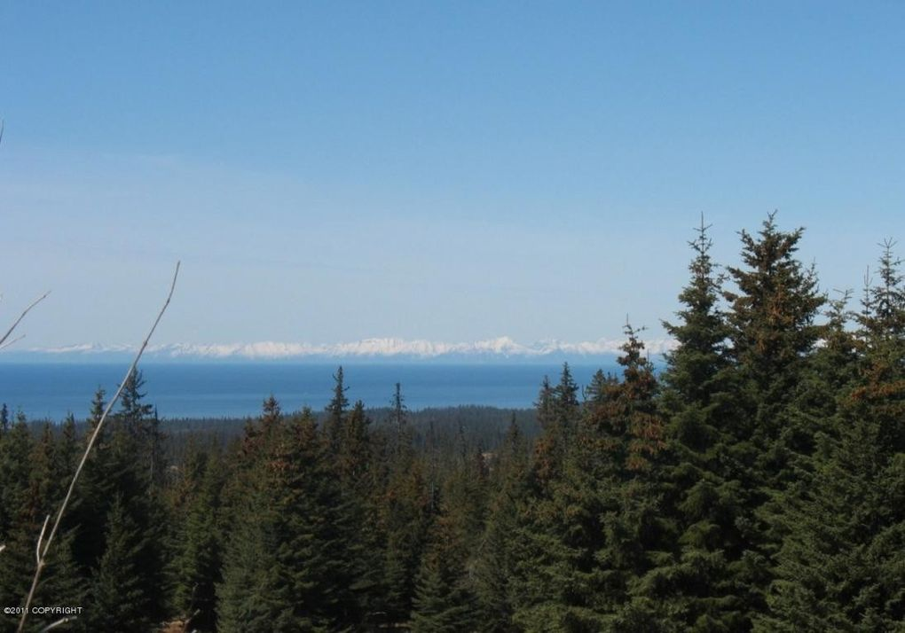Tr 3 Forest Dr, Homer, AK 99603