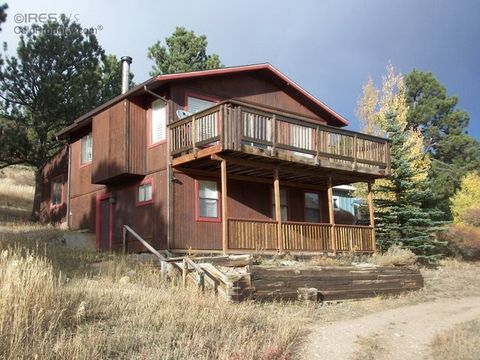 59 E 5th St, Nederland, CO 80466