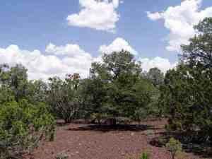 23 N Mountain Pine Rd, Vernon, AZ 85940