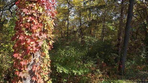 Photo of Cemetery Rd, Victory Mills, NY 12884