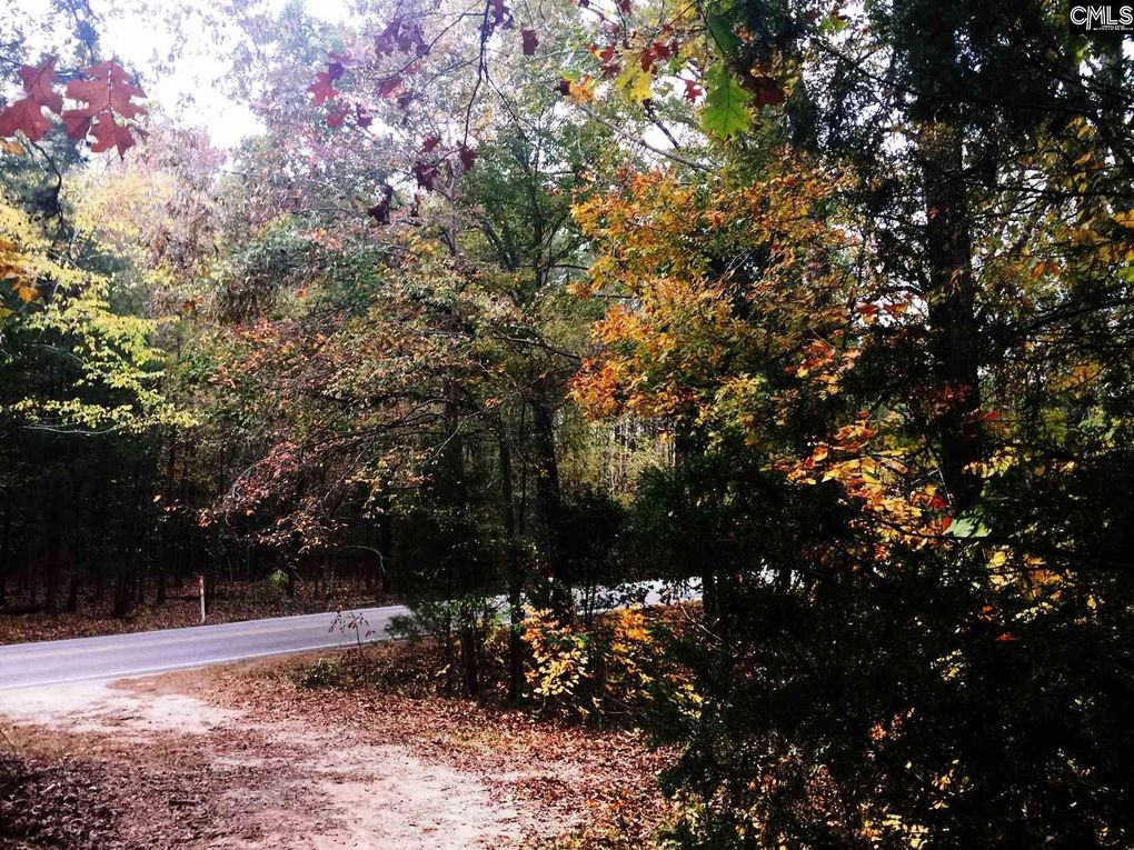 2377 Wessinger Rd, Chapin, SC 29036