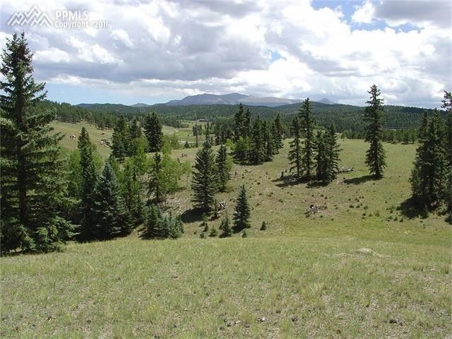 3653 county 42 rd divide co 80814 home for sale and