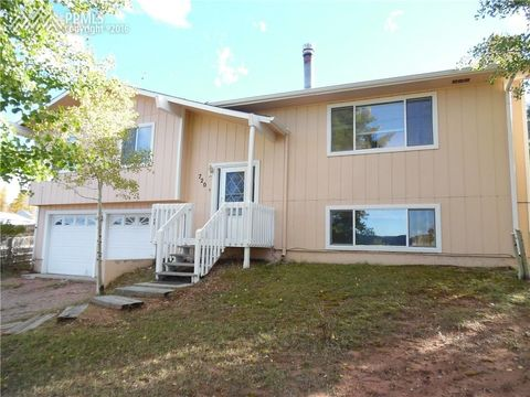 720 W Northwoods Dr, Woodland Park, CO 80863