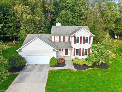 240 Mountainside Dr, Painesville, OH 44077
