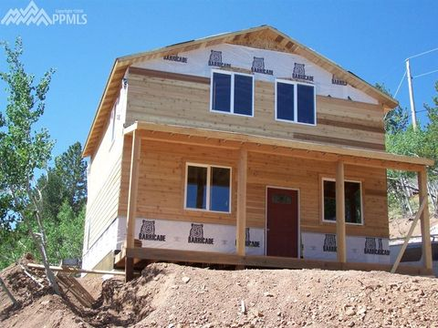 297 Willow Rd, Divide, CO 80814