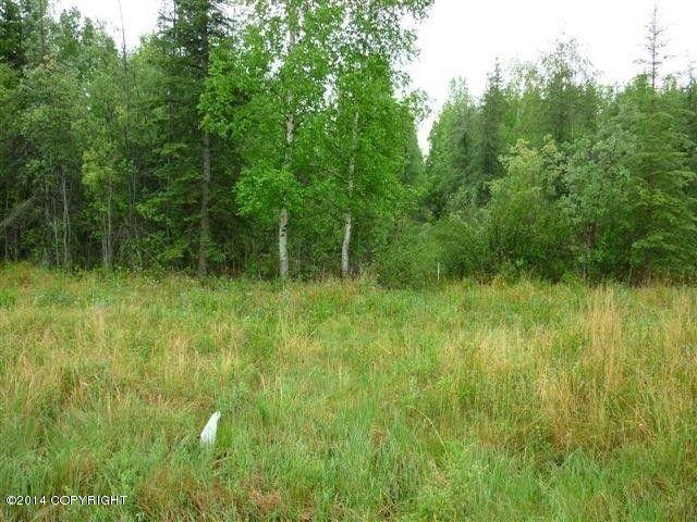 Tl2603 Bradway Rd, North Pole, AK 99705