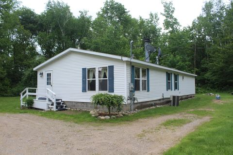 Carson City Mi Mobile Manufactured Homes For Sale Realtorcom