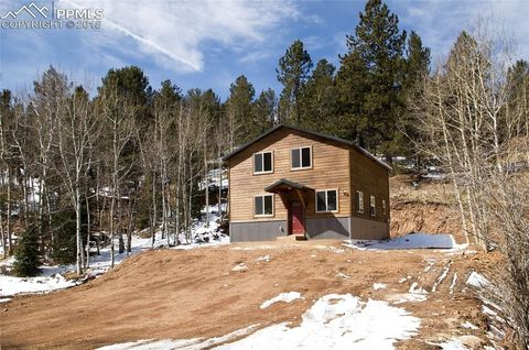213 Willow Rd, Divide, CO 80814