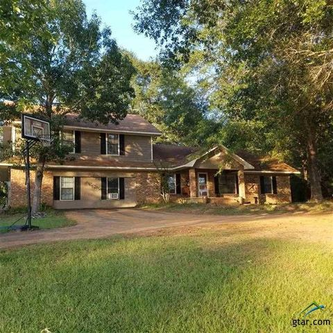Photo of 238 County Road 4690, Atlanta, TX 75551