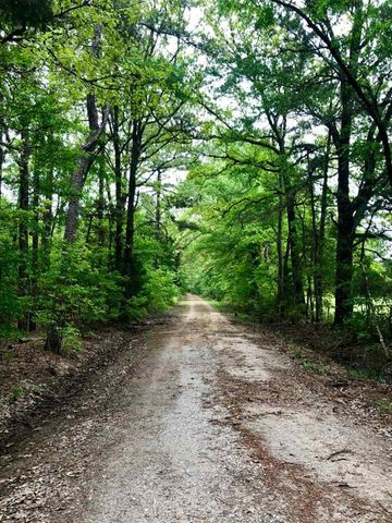 Photo of County Road 2124, Bagwell, TX 75412