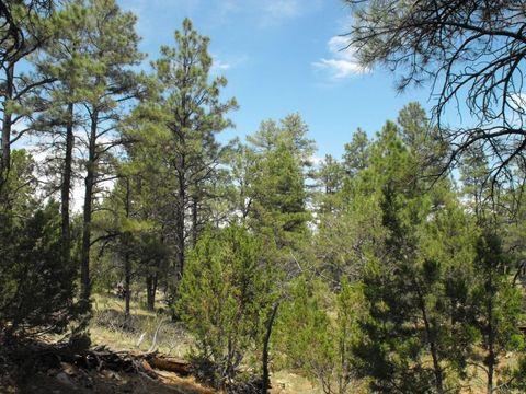 3714 Meadow Wood Dr, Happy Jack, AZ 86024