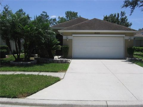 26524 Whirlaway Ter, Wesley Chapel, FL 33544
