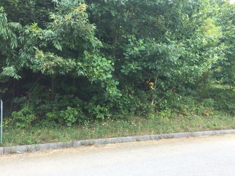 115 Rosecliff Dr, Fall Branch, TN 37656