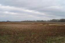 County Road 800 W, Lyons, IN 47443