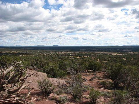 9554 Blue Bell Ln, White Mountain Lake, AZ 85912