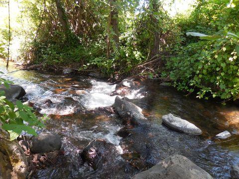 Photo of 31319 Manton Rd, Manton, CA 96059