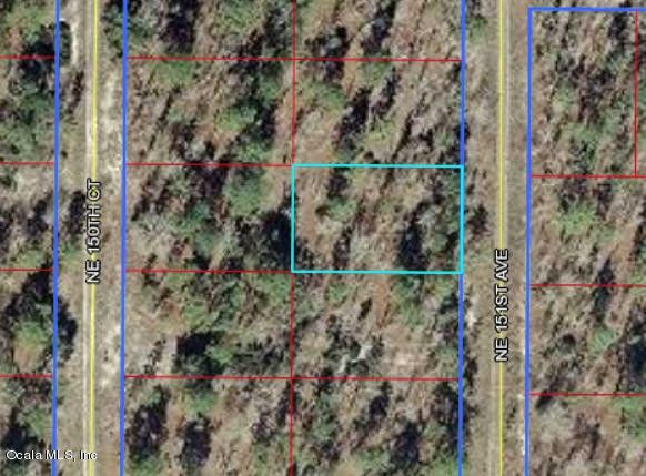 Ne 151 Ave Williston FL 32696 Land For Sale and Real Estate