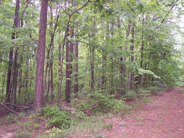 Lake arrowhead lot 771 hickory flat ms 38633 land for for Hickory flat
