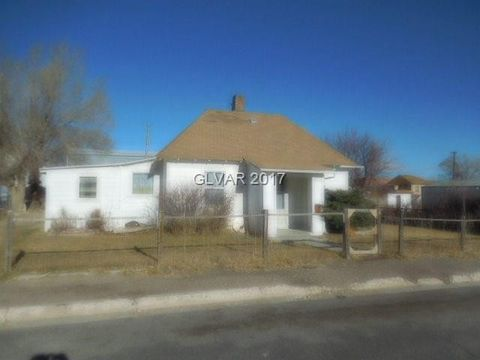 30 Sunshine St, Ruth, NV 89319