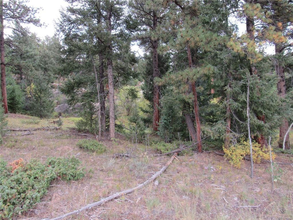 11615 S Us Hwy 285 Frontage Rd, Conifer, CO 80433