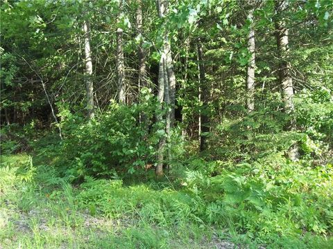50290 Blue Moon Rd, Drummond, WI 54832