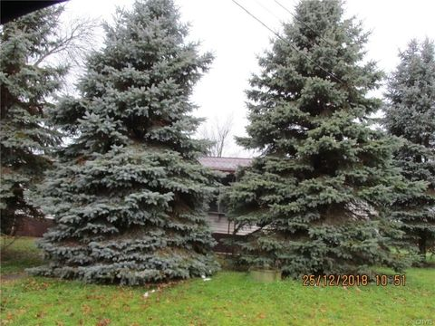 28575 Elm St, Redwood, NY 13679