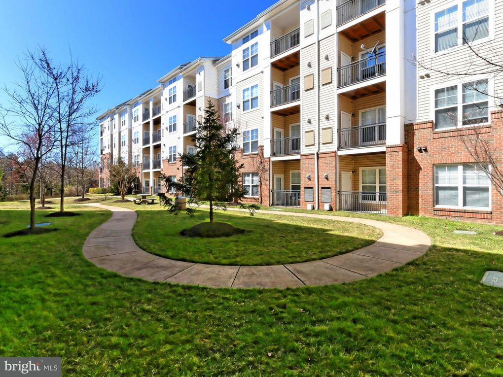 3850 Lightfoot St Unit 253 Chantilly, VA 20151