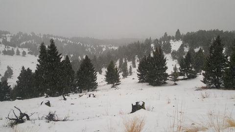 Photo of Tbd Beaverslide Rd Lot 39, Helmville, MT 59843