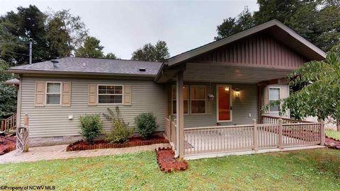 1317 Buttermilk Ridge Rd, Belington, WV 26250