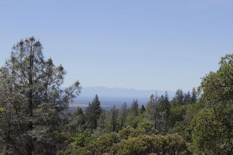 Photo of 150 Acres Donkey Mine Rd, Oak Run, CA 96069