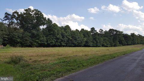 Turkey Farm Rd Lot 2, Little Orleans, MD 21766