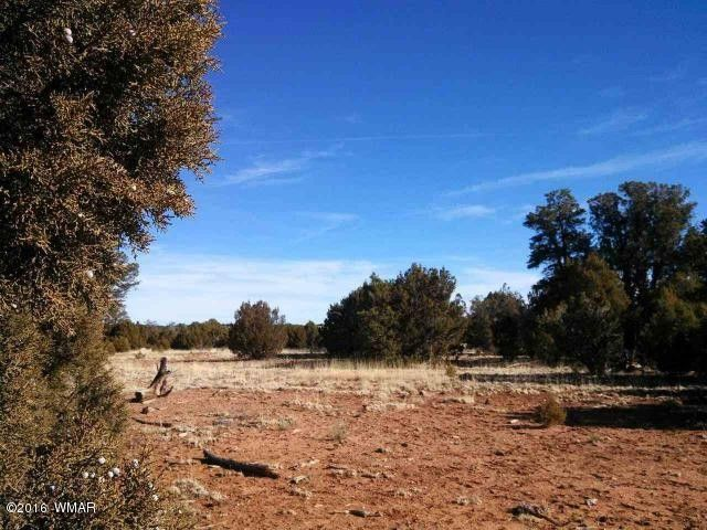 Saw Mill For Sale >> 4845 Sawmill Rd, Clay Springs, AZ 85923 - realtor.com®